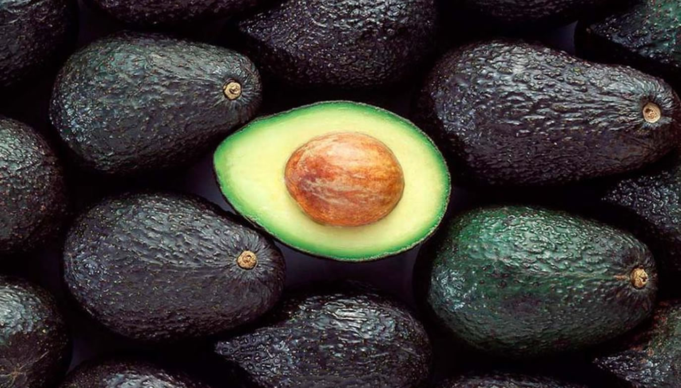 Avocado Hass (Palta)
